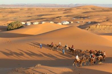 Camel Trek to Bedouin Tent
