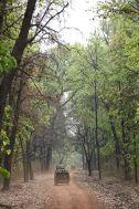 India_safari jeep