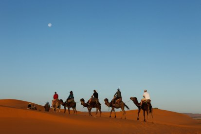 experience_camel-ride
