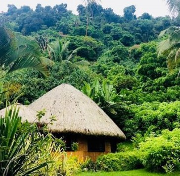 Matangi_thatched roof